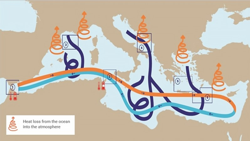 Changes in the Mediterranean              Sea over the last 25 years